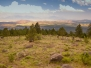 Utah Rocks - Geologically Speaking